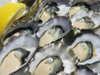 charis_oysters