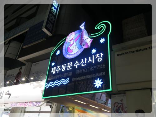 Korea_737
