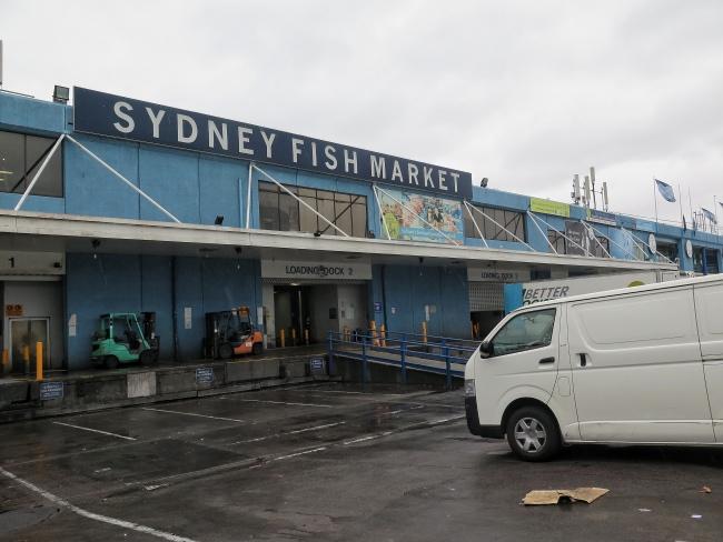 Australia_Sydney_650_20