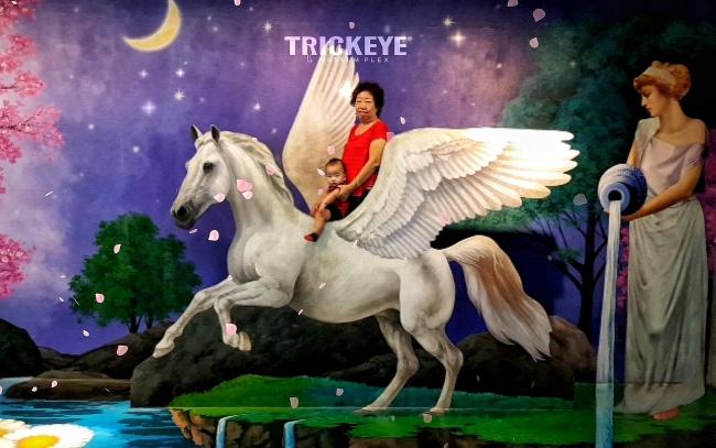 Trickeye_650_12